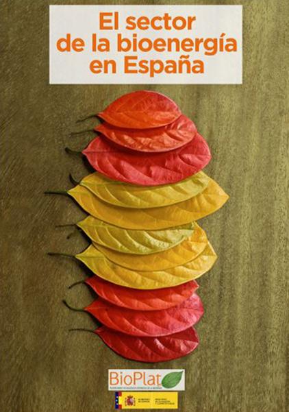 El sector de la bionergía en España (2015)