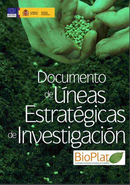 Líneas Estratégicas de Investigación (2009)